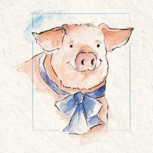 Schmitz_Illustration-Schwein_02
