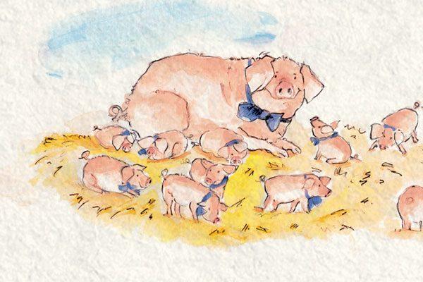 Schmitz_Illustration-Schwein_03