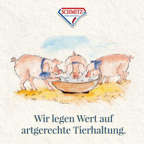 Schmitz_Schweine-Qualitaet_02 (1)