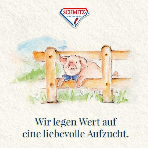 Schmitz_Schweine-Qualitaet_03 (1)